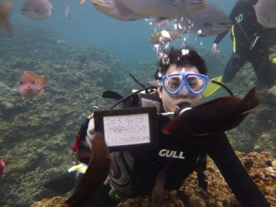 青の洞窟体験ダイビング写真2