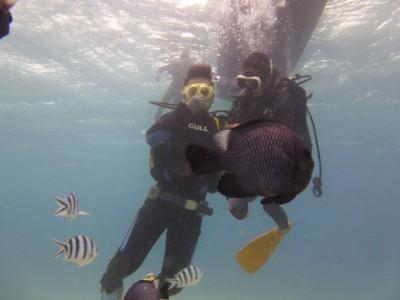 お魚いっぱい体験ダイビング写真4