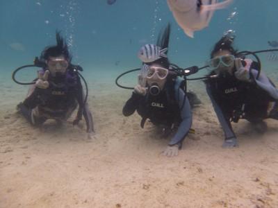 お魚いっぱい体験ダイビング写真2