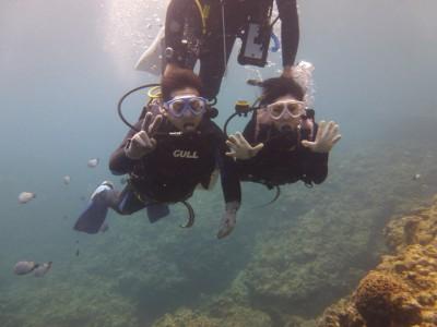 Wコース体験ダイビング写真