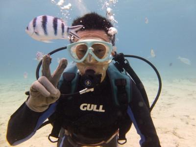 お魚いっぱい体験ダイビング写真5