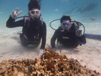 Wコースお魚いっぱい体験ダイビング編写真1