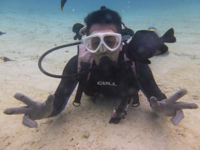お魚いっぱい体験ダイビング写真3