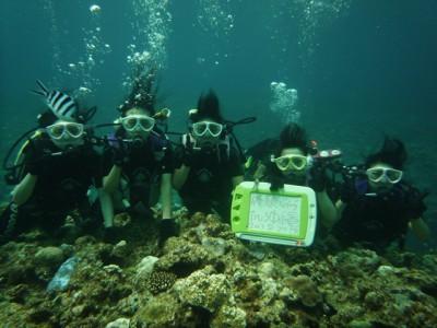 修学旅行体験ダイビング6
