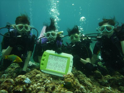 修学旅行体験ダイビング7