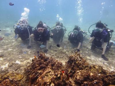 沖縄修学旅行体験ダイビング3