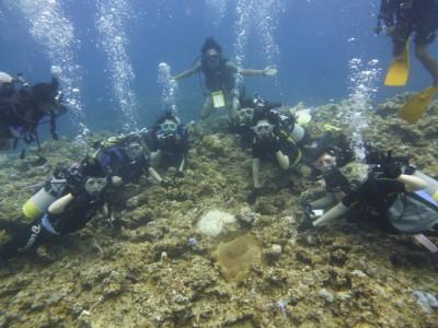 修学旅行体験ダイビング5