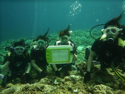 修学旅行体験ダイビング8