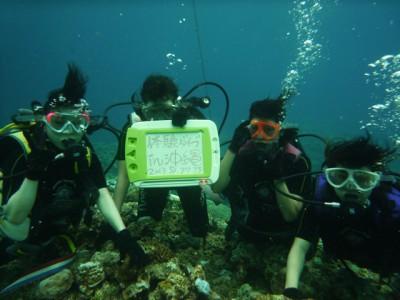 修学旅行体験ダイビング9