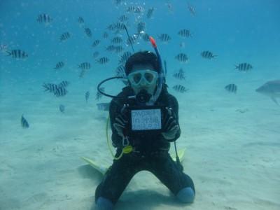 OWD海洋1