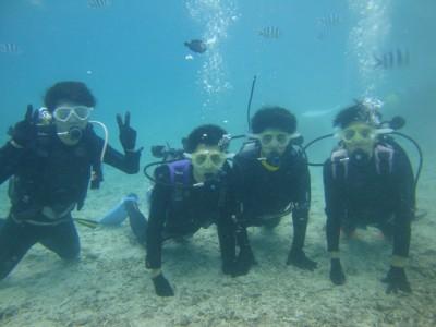 修学旅行体験ダイビング4