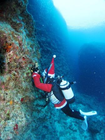 サンタクロースダイビング|ブルーリーフ