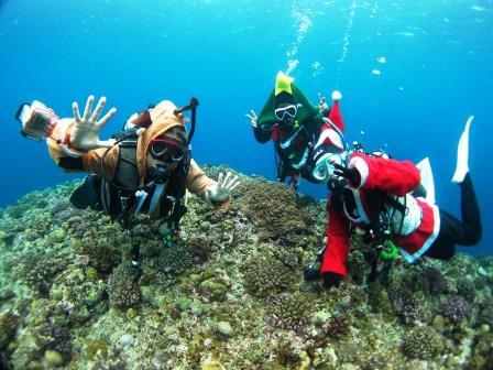 クリスマスイベント|ブルーリーフ