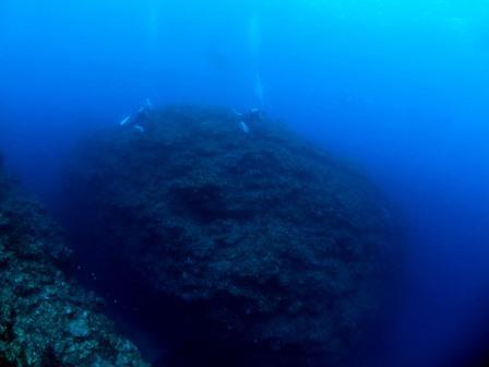 恩納村地形ダイビング ブルーリーフ