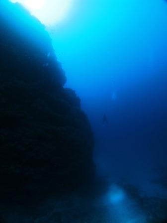 沖縄 地形ダイビング ブルーリーフ