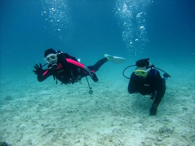 7沖縄ダイビング