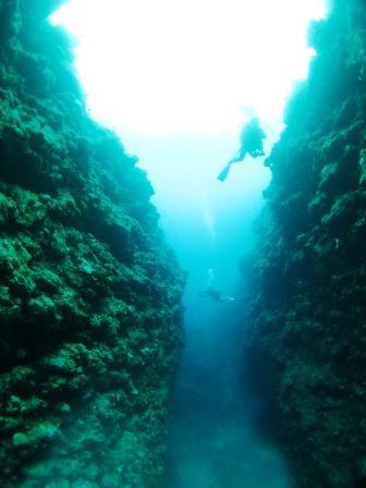 地形ダイビング ブルーリーフ