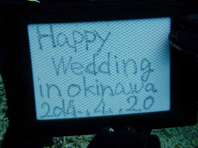 weddingDive