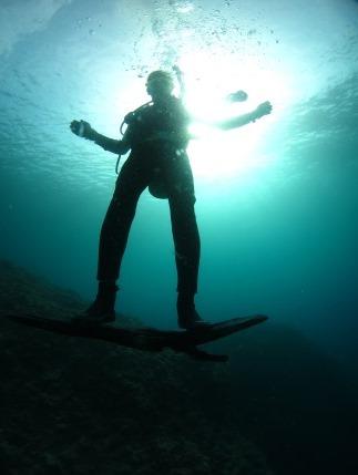 水中 サーフィン|ブルーリーフ