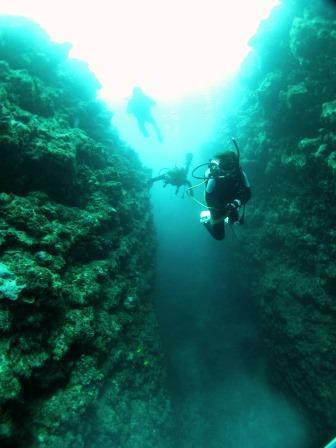 恩納村地形ダイビング|ブルーリーフ