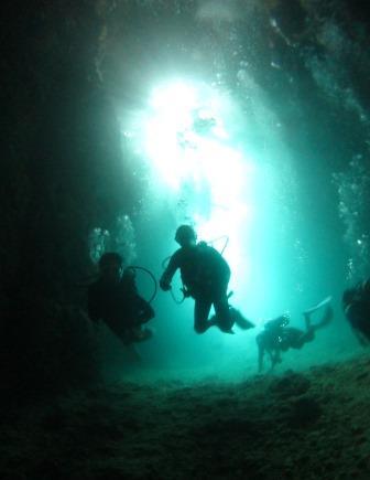青の洞窟ファンダイビング|ブルーリーフ