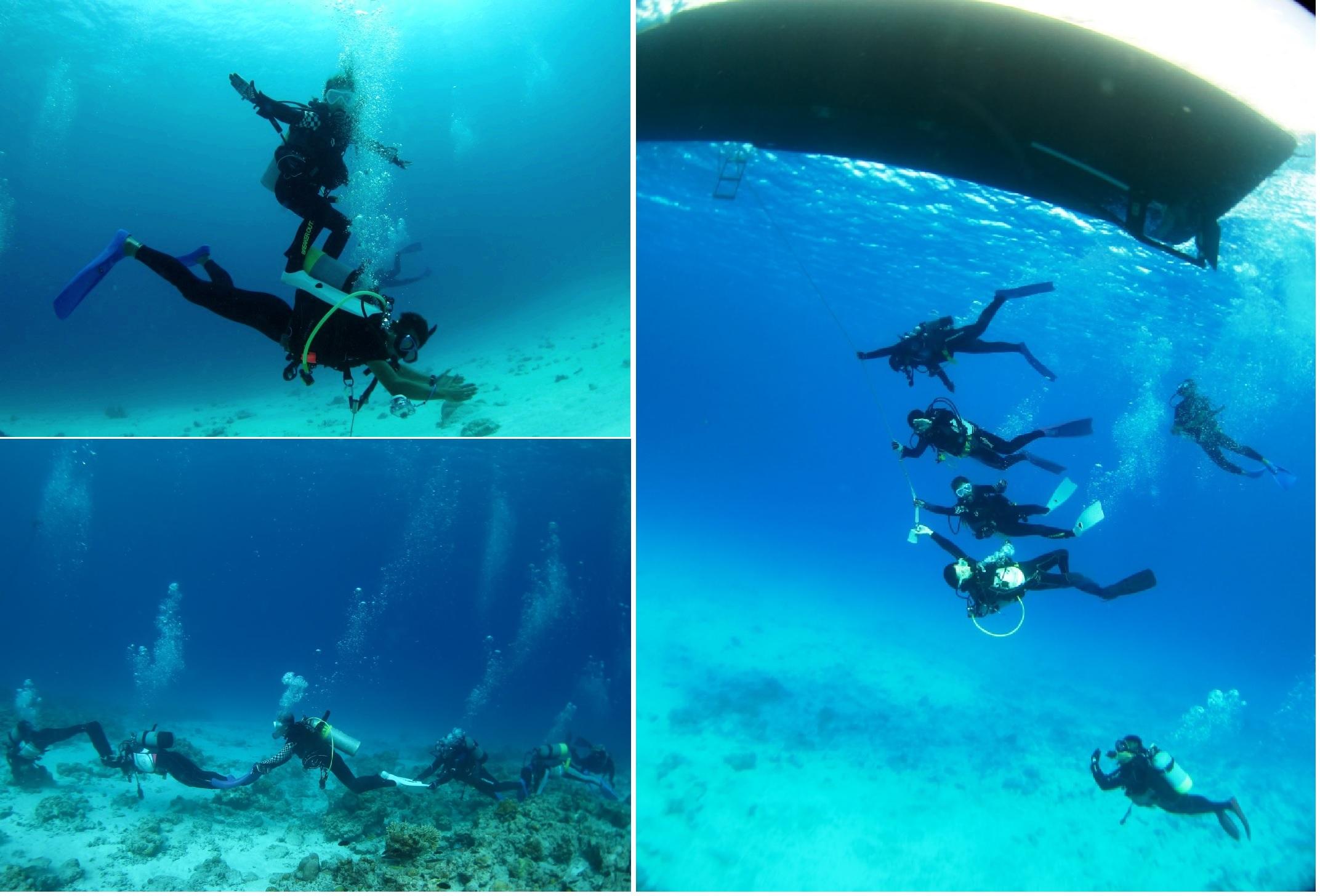 水納島ボートダイビング|ブルーリーフ