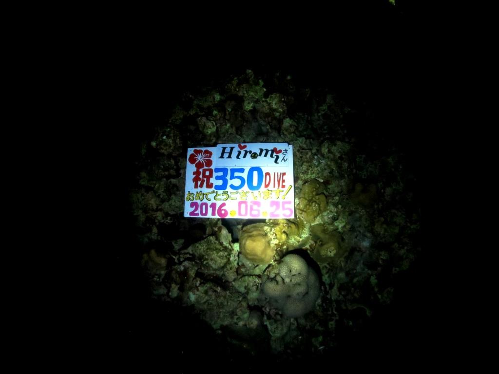 記念ダイビング350本お祝い|ブルーリーフ