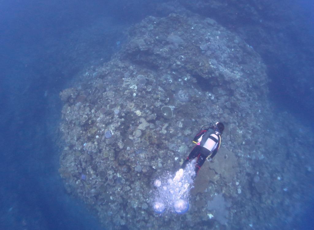 恩納村地形ダイビング